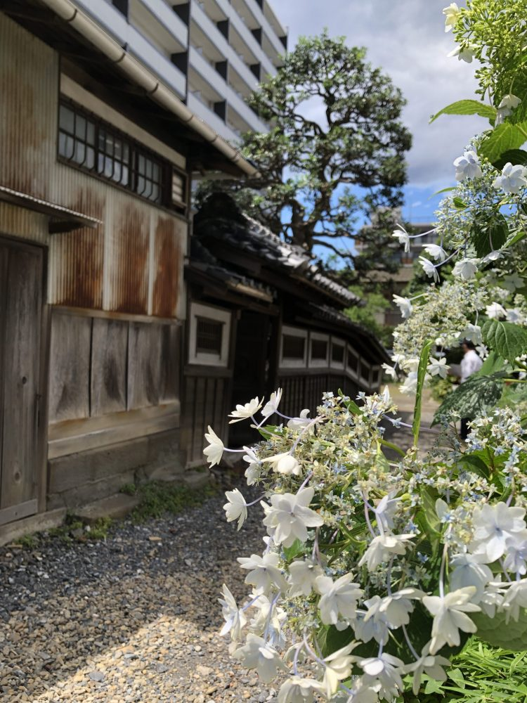 秋田家住宅(埼玉県所沢市)国の有形文化財